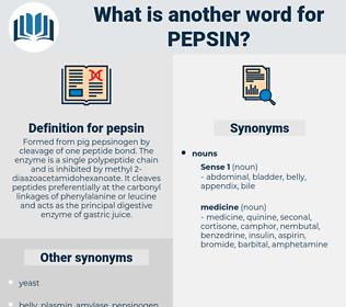 pepsin, synonym pepsin, another word for pepsin, words like pepsin, thesaurus pepsin
