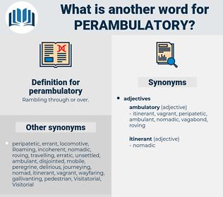 perambulatory, synonym perambulatory, another word for perambulatory, words like perambulatory, thesaurus perambulatory