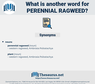 perennial ragweed, synonym perennial ragweed, another word for perennial ragweed, words like perennial ragweed, thesaurus perennial ragweed