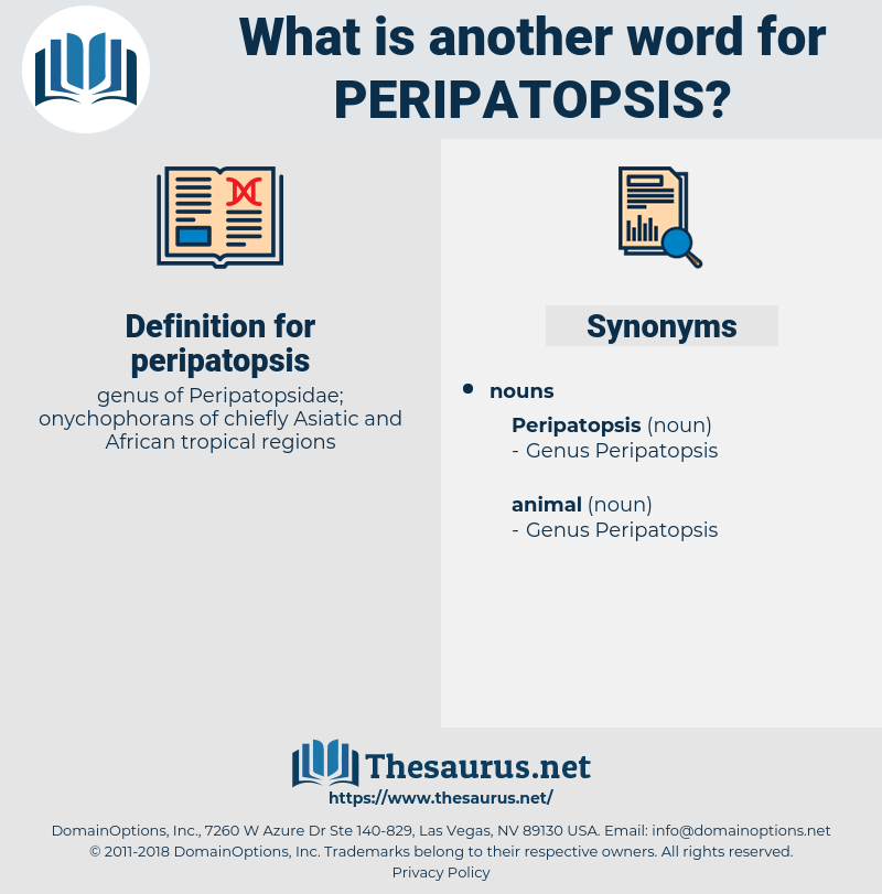 peripatopsis, synonym peripatopsis, another word for peripatopsis, words like peripatopsis, thesaurus peripatopsis