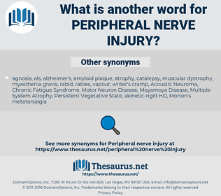 peripheral nerve injury, synonym peripheral nerve injury, another word for peripheral nerve injury, words like peripheral nerve injury, thesaurus peripheral nerve injury