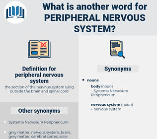 peripheral nervous system, synonym peripheral nervous system, another word for peripheral nervous system, words like peripheral nervous system, thesaurus peripheral nervous system