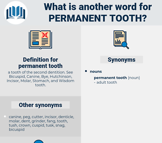 permanent tooth, synonym permanent tooth, another word for permanent tooth, words like permanent tooth, thesaurus permanent tooth