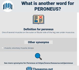 peroneus, synonym peroneus, another word for peroneus, words like peroneus, thesaurus peroneus