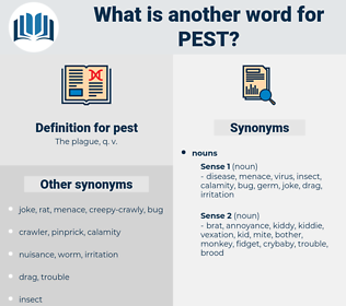 pest, synonym pest, another word for pest, words like pest, thesaurus pest