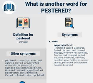 pestered, synonym pestered, another word for pestered, words like pestered, thesaurus pestered