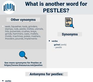 pestles, synonym pestles, another word for pestles, words like pestles, thesaurus pestles