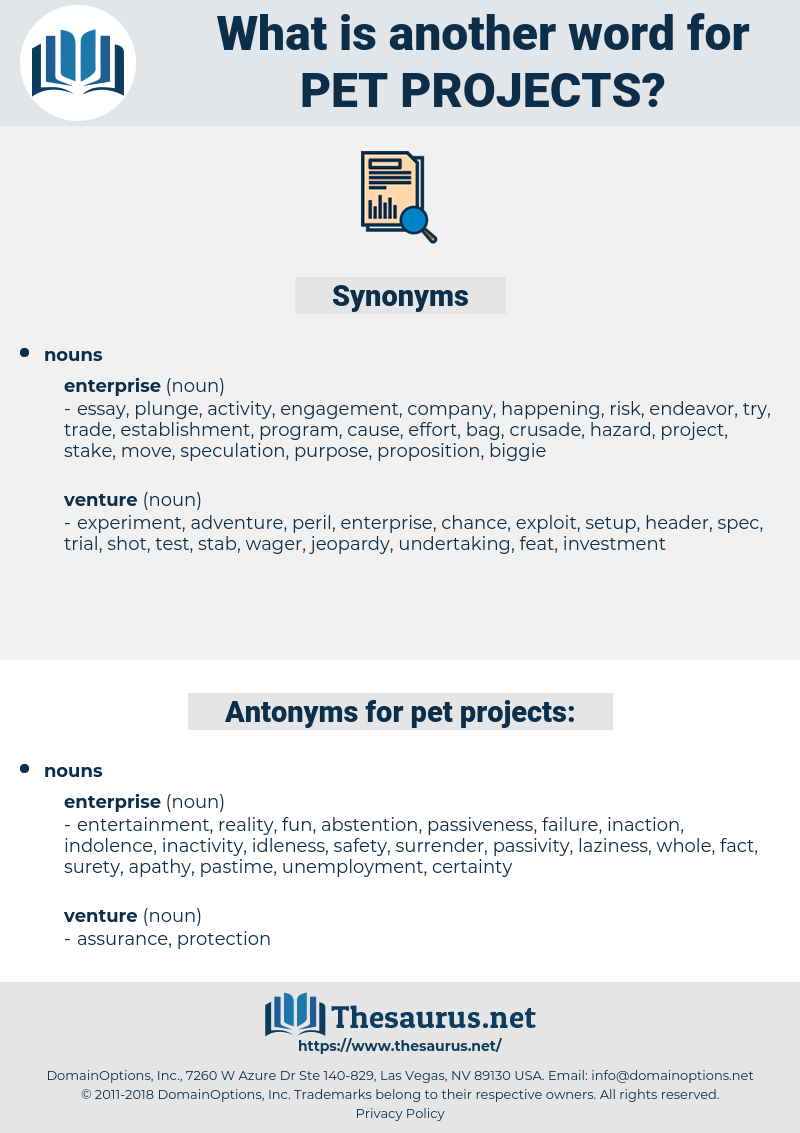pet projects, synonym pet projects, another word for pet projects, words like pet projects, thesaurus pet projects