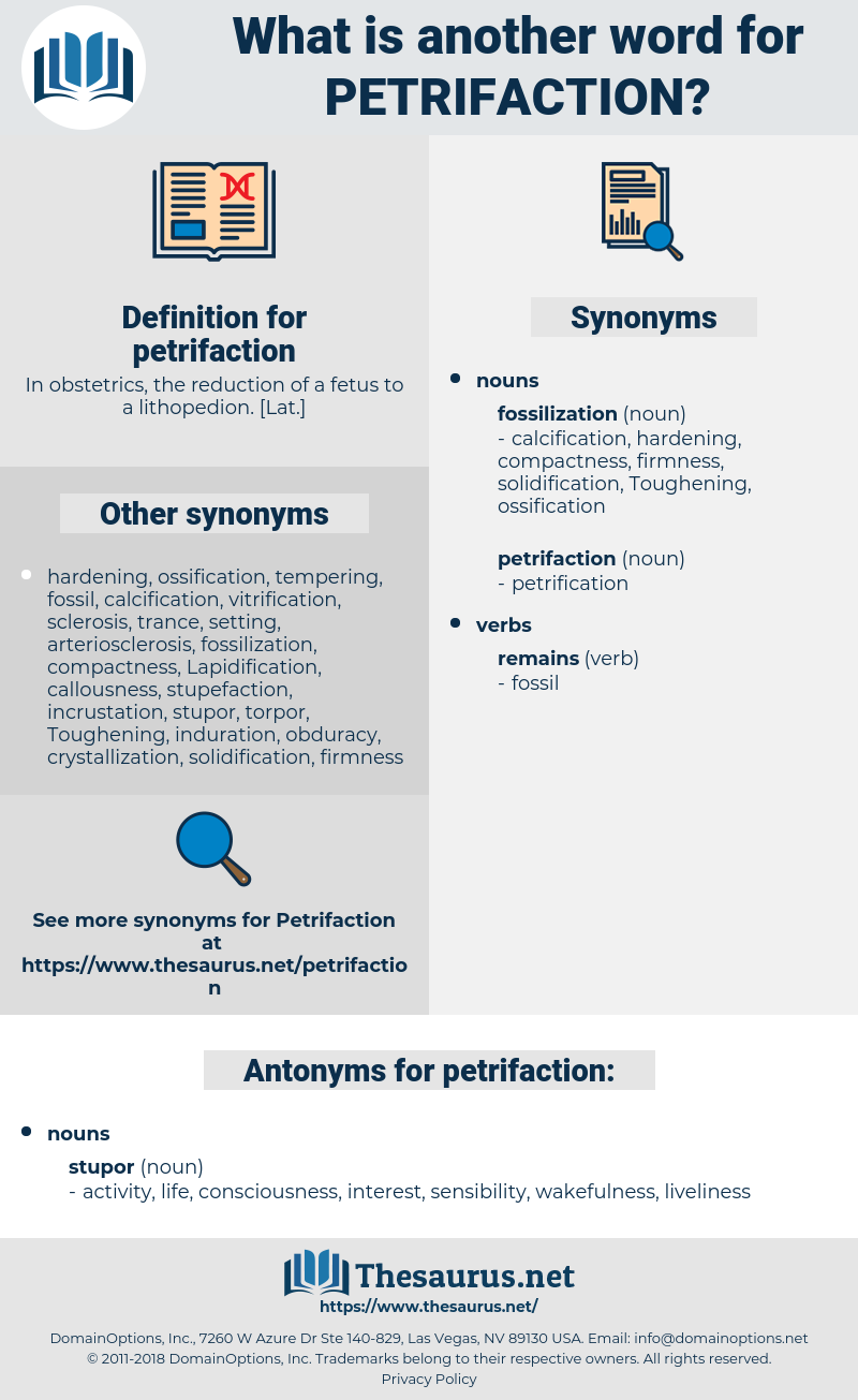 petrifaction, synonym petrifaction, another word for petrifaction, words like petrifaction, thesaurus petrifaction