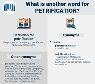 petrification, synonym petrification, another word for petrification, words like petrification, thesaurus petrification