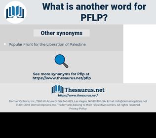 PFLP, synonym PFLP, another word for PFLP, words like PFLP, thesaurus PFLP