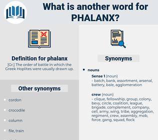 phalanx, synonym phalanx, another word for phalanx, words like phalanx, thesaurus phalanx