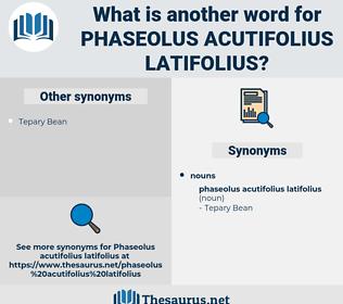 Phaseolus Acutifolius Latifolius, synonym Phaseolus Acutifolius Latifolius, another word for Phaseolus Acutifolius Latifolius, words like Phaseolus Acutifolius Latifolius, thesaurus Phaseolus Acutifolius Latifolius