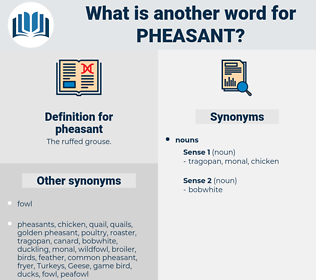 pheasant, synonym pheasant, another word for pheasant, words like pheasant, thesaurus pheasant