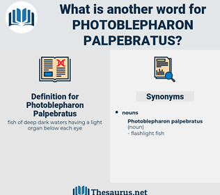 Photoblepharon Palpebratus, synonym Photoblepharon Palpebratus, another word for Photoblepharon Palpebratus, words like Photoblepharon Palpebratus, thesaurus Photoblepharon Palpebratus