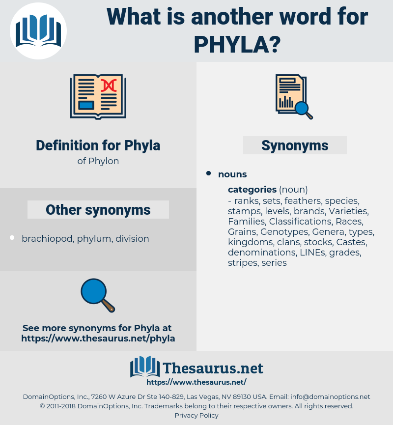 Phyla, synonym Phyla, another word for Phyla, words like Phyla, thesaurus Phyla