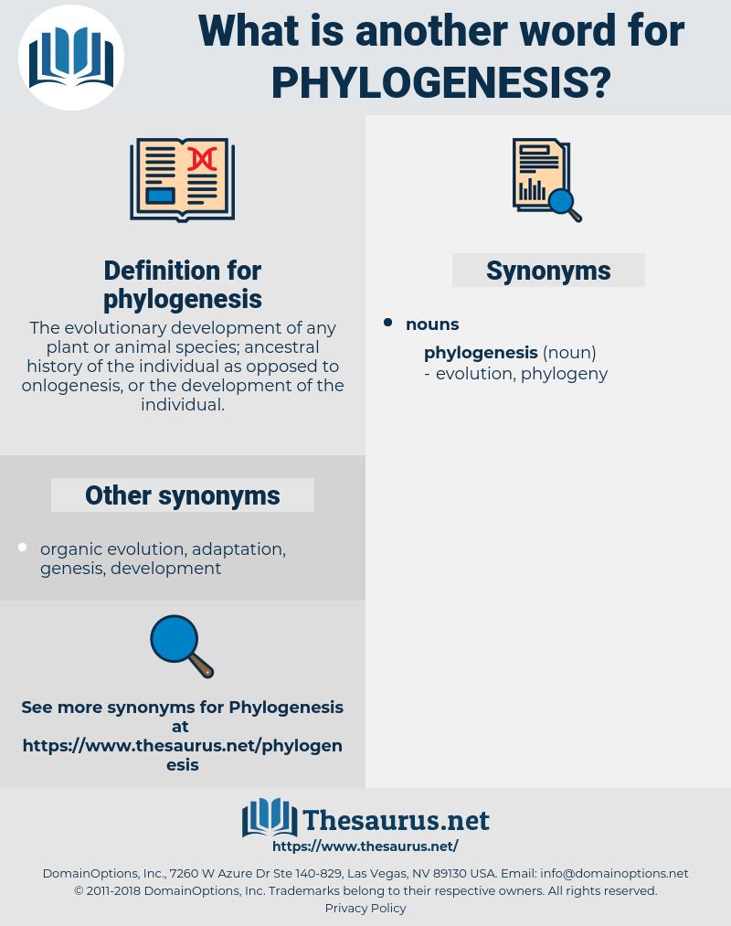 phylogenesis, synonym phylogenesis, another word for phylogenesis, words like phylogenesis, thesaurus phylogenesis