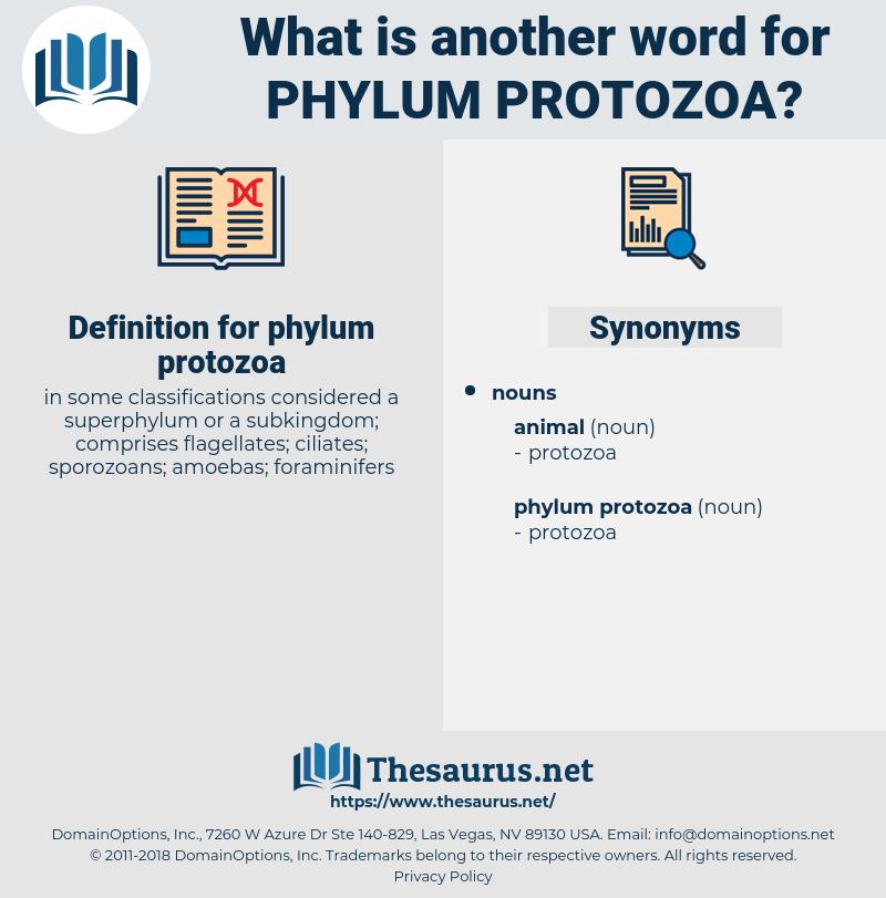 phylum protozoa, synonym phylum protozoa, another word for phylum protozoa, words like phylum protozoa, thesaurus phylum protozoa