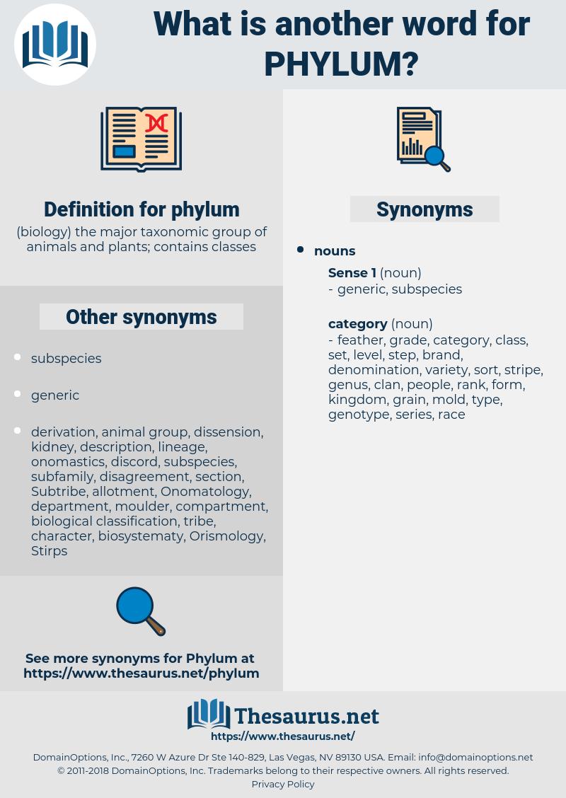 phylum, synonym phylum, another word for phylum, words like phylum, thesaurus phylum