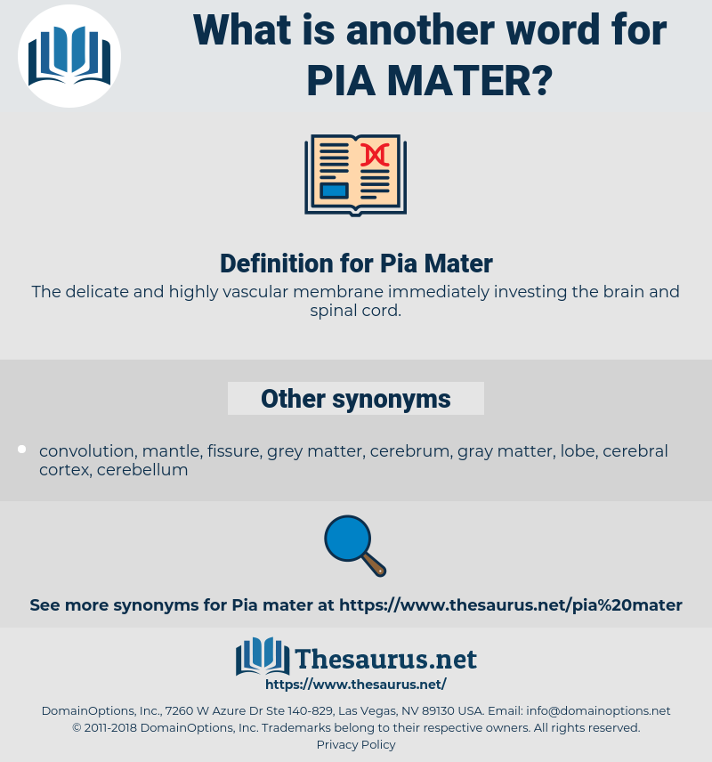 Pia Mater, synonym Pia Mater, another word for Pia Mater, words like Pia Mater, thesaurus Pia Mater