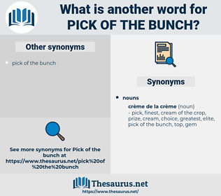 pick of the bunch, synonym pick of the bunch, another word for pick of the bunch, words like pick of the bunch, thesaurus pick of the bunch
