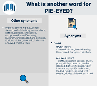 pie-eyed, synonym pie-eyed, another word for pie-eyed, words like pie-eyed, thesaurus pie-eyed