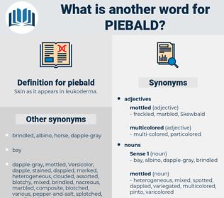 piebald, synonym piebald, another word for piebald, words like piebald, thesaurus piebald