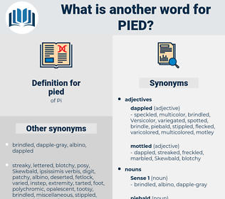 pied, synonym pied, another word for pied, words like pied, thesaurus pied
