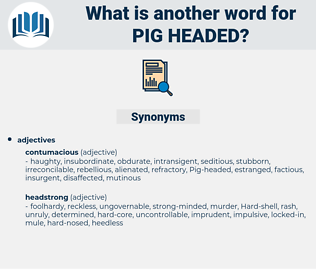 pig headed, synonym pig headed, another word for pig headed, words like pig headed, thesaurus pig headed