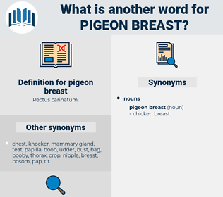 pigeon breast, synonym pigeon breast, another word for pigeon breast, words like pigeon breast, thesaurus pigeon breast