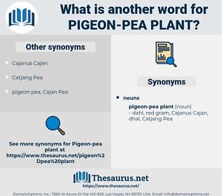 pigeon-pea plant, synonym pigeon-pea plant, another word for pigeon-pea plant, words like pigeon-pea plant, thesaurus pigeon-pea plant