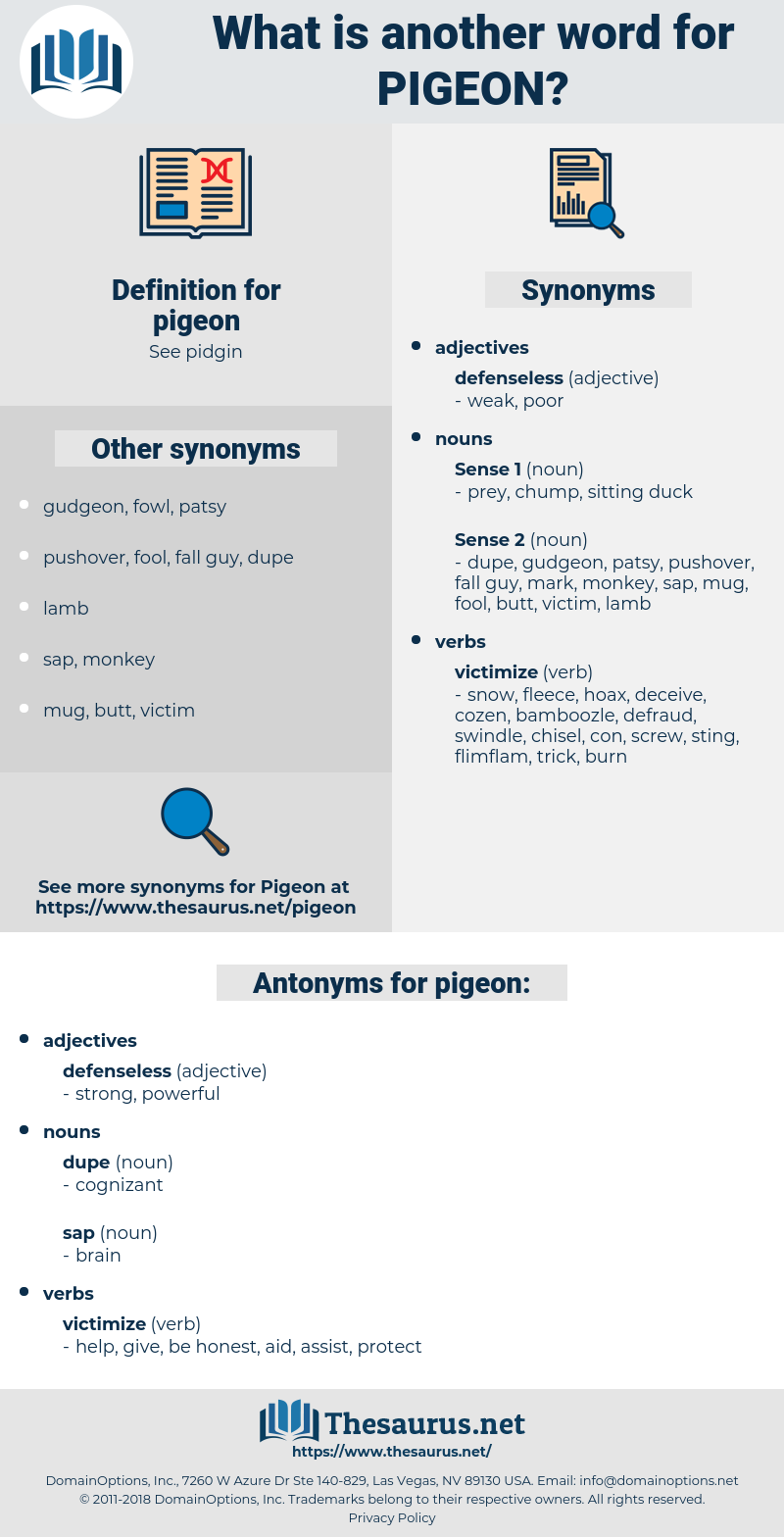 pigeon, synonym pigeon, another word for pigeon, words like pigeon, thesaurus pigeon