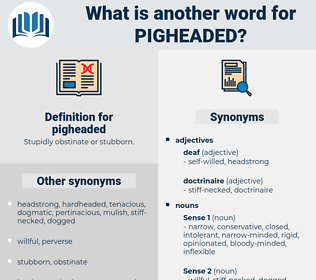 pigheaded, synonym pigheaded, another word for pigheaded, words like pigheaded, thesaurus pigheaded