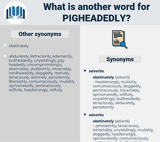 pigheadedly, synonym pigheadedly, another word for pigheadedly, words like pigheadedly, thesaurus pigheadedly