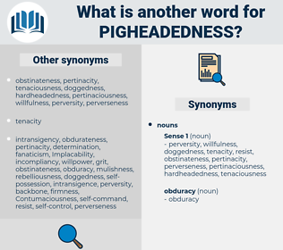 pigheadedness, synonym pigheadedness, another word for pigheadedness, words like pigheadedness, thesaurus pigheadedness