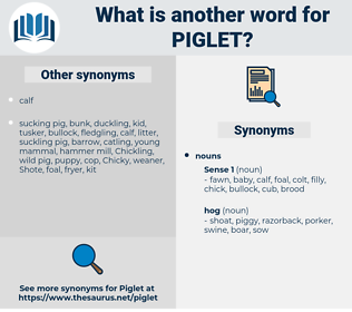 piglet, synonym piglet, another word for piglet, words like piglet, thesaurus piglet