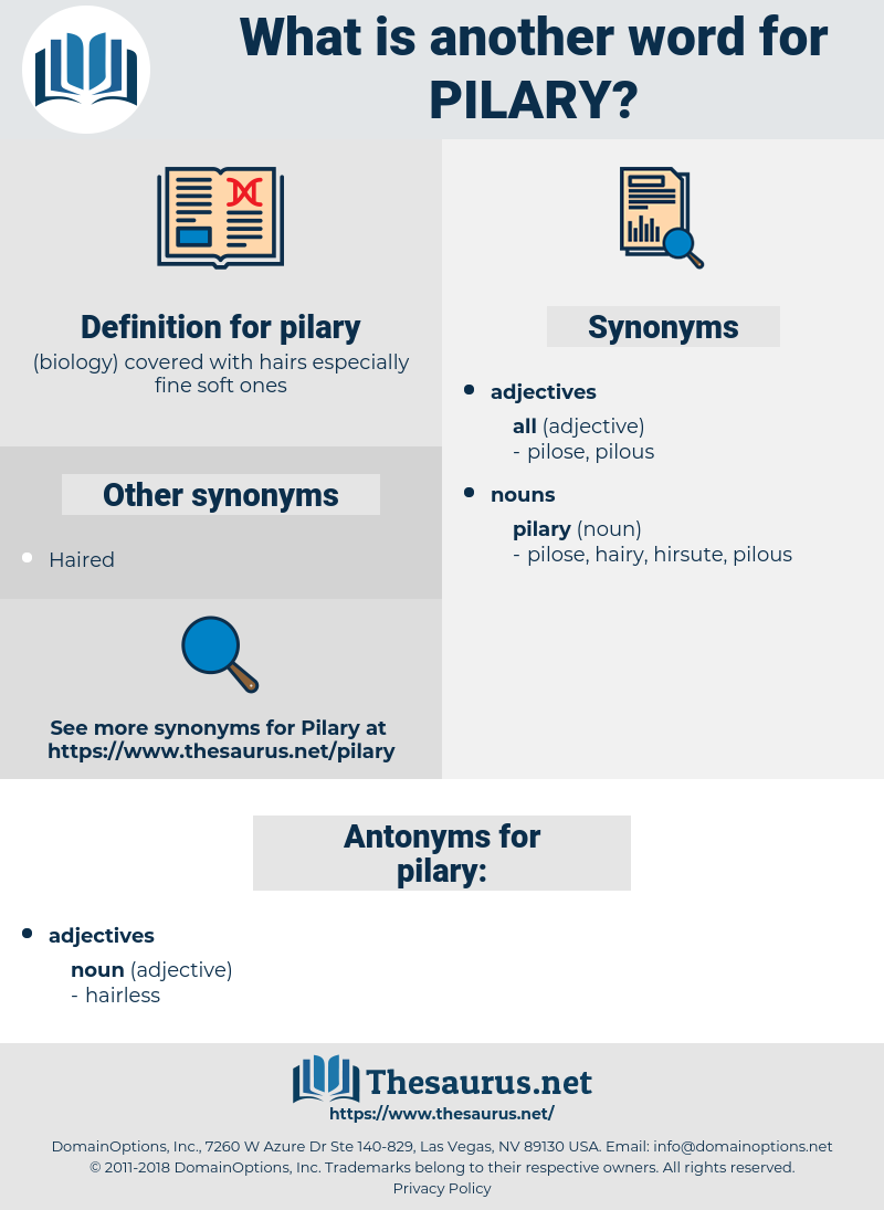 pilary, synonym pilary, another word for pilary, words like pilary, thesaurus pilary