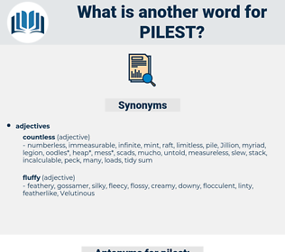 pilest, synonym pilest, another word for pilest, words like pilest, thesaurus pilest