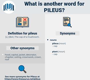 pileus, synonym pileus, another word for pileus, words like pileus, thesaurus pileus