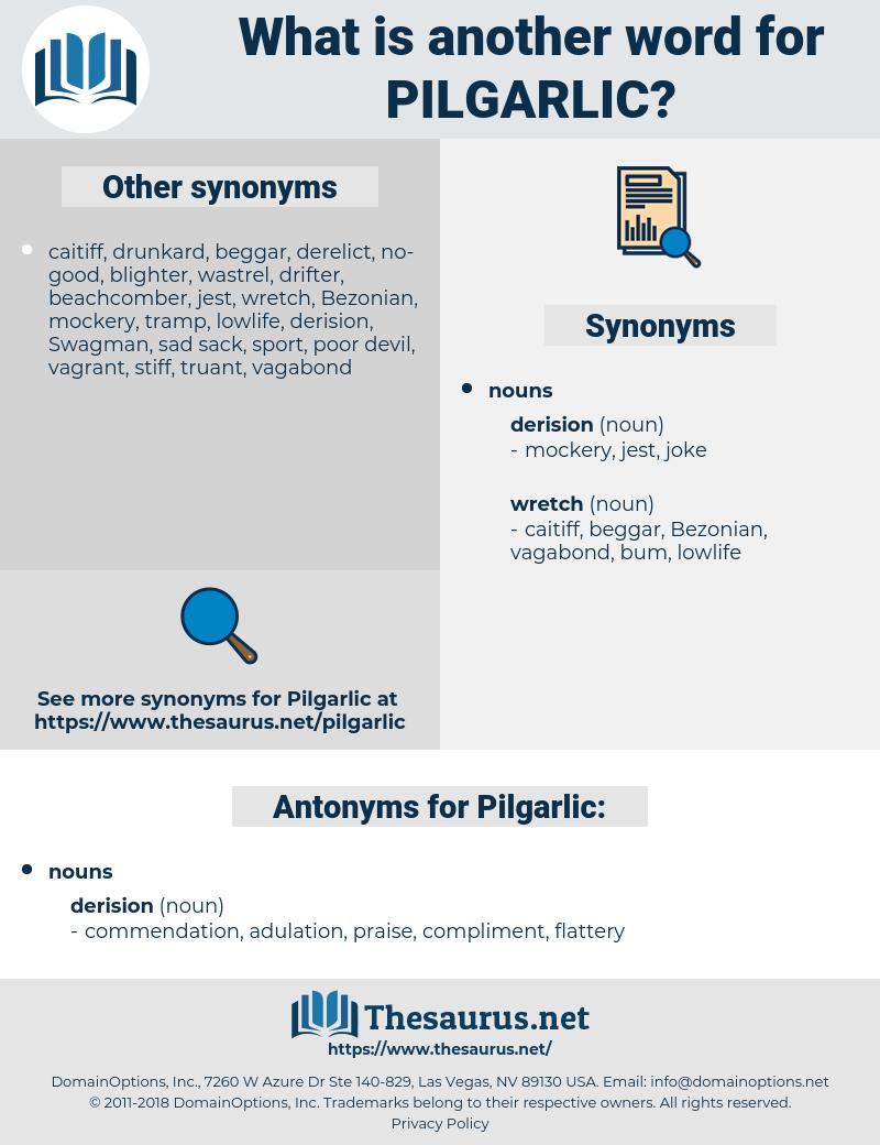 Pilgarlic, synonym Pilgarlic, another word for Pilgarlic, words like Pilgarlic, thesaurus Pilgarlic