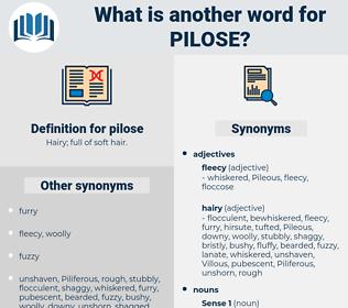 pilose, synonym pilose, another word for pilose, words like pilose, thesaurus pilose
