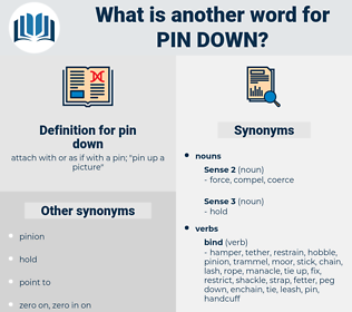 pin down, synonym pin down, another word for pin down, words like pin down, thesaurus pin down
