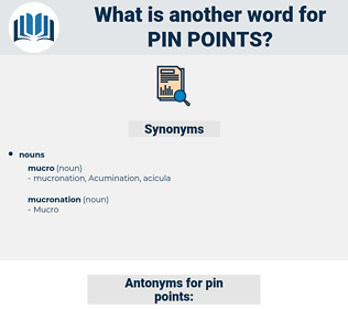pin points, synonym pin points, another word for pin points, words like pin points, thesaurus pin points
