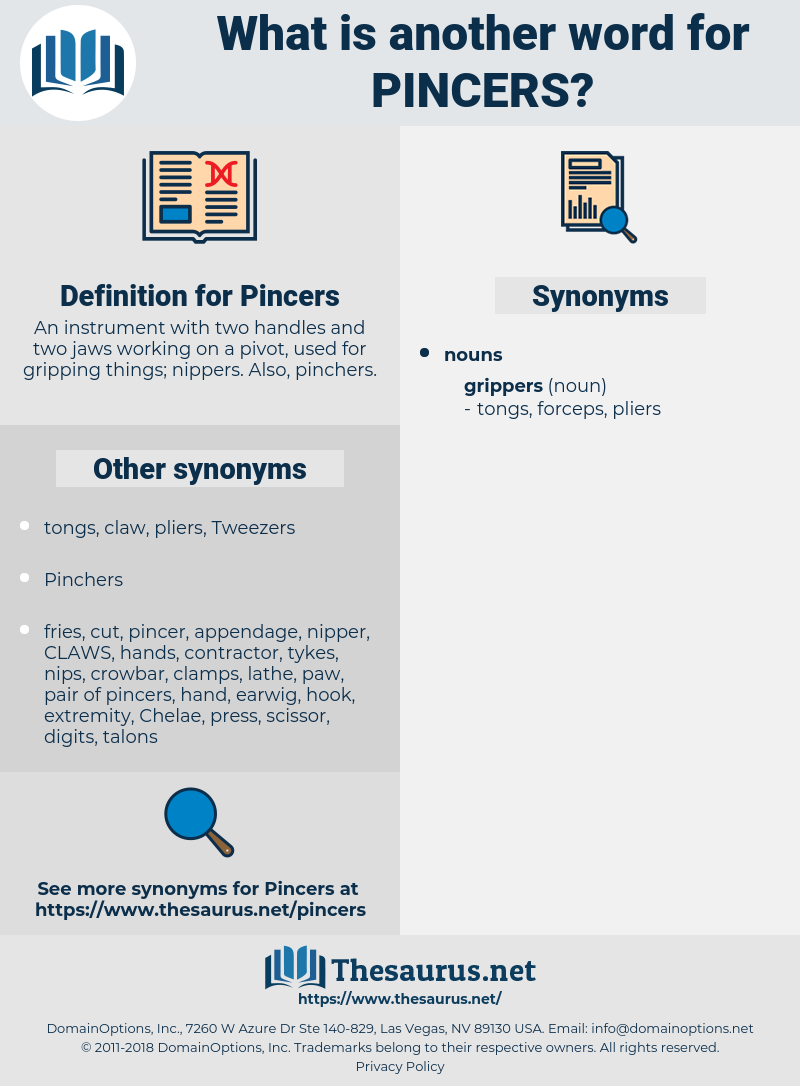 Pincers, synonym Pincers, another word for Pincers, words like Pincers, thesaurus Pincers