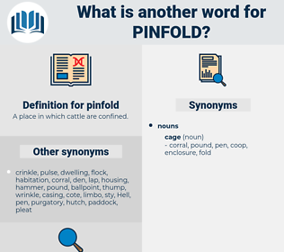 pinfold, synonym pinfold, another word for pinfold, words like pinfold, thesaurus pinfold