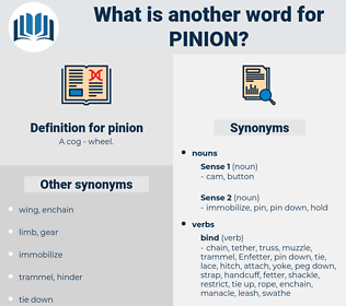 pinion, synonym pinion, another word for pinion, words like pinion, thesaurus pinion