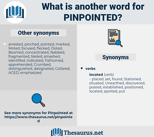 pinpointed, synonym pinpointed, another word for pinpointed, words like pinpointed, thesaurus pinpointed