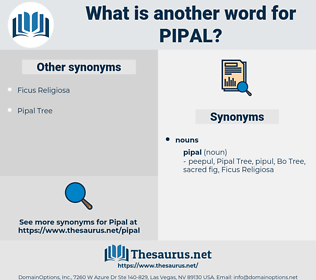 pipal, synonym pipal, another word for pipal, words like pipal, thesaurus pipal