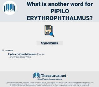 Pipilo Erythrophthalmus, synonym Pipilo Erythrophthalmus, another word for Pipilo Erythrophthalmus, words like Pipilo Erythrophthalmus, thesaurus Pipilo Erythrophthalmus