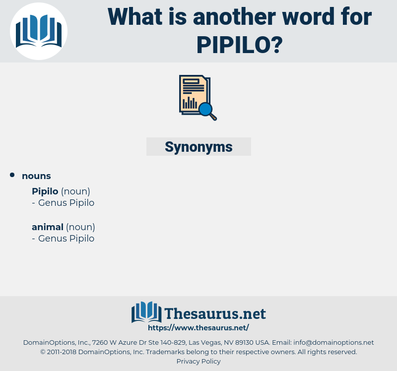 pipilo, synonym pipilo, another word for pipilo, words like pipilo, thesaurus pipilo